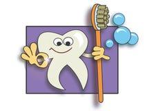 очистьте супер зуб Стоковое фото RF