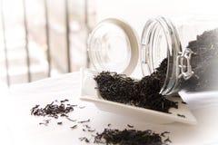 очистьте чай листьев графа серый Стоковая Фотография RF