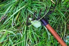 Очищать вверх траву с грабл стоковые фотографии rf
