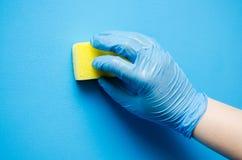 Очищать в квартире Женские руки в голубых резиновых перчатках C Стоковые Фотографии RF