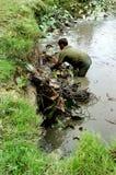 Очищать озеро Стоковое Фото
