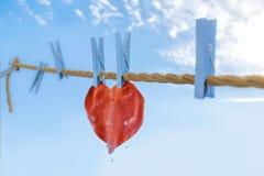 Очищать сердце Стоковая Фотография RF