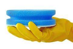 очищать scrub Стоковые Изображения