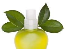 очищая зеленый цвет Стоковая Фотография RF