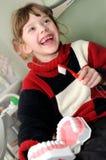 очищая медицинская тренировка зуба Стоковые Фото