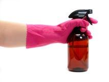 очищая относящие к окружающей среде продукты Стоковые Фотографии RF