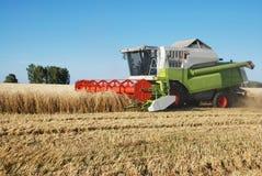 очищая поле зернокомбайна wheaten стоковые фото