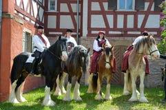 4 лошади графства стоковые фото