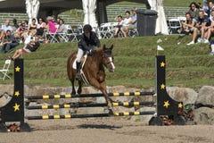 лошади лошади dressage конноспортивные скача всадники поло silhouettes вектор спорта Стоковые Фото