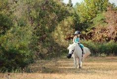 лошадь девушки немногая Стоковые Фотографии RF