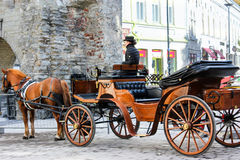 лошадь нарисованная экипажом Стоковая Фотография