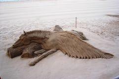 лошадь подогнали pegasus, котор Стоковые Изображения RF