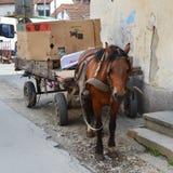 лошадь тележки старая стоковая фотография