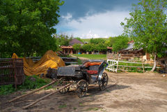 лошадь экипажа старая Стоковая Фотография