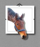 лошадь 3d стоковое фото rf