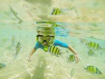 Оягнитесь в костюме заплывания snorkeling в Индийском океане стоковое фото rf