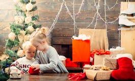Оягнитесь иметь потеху около рождественской елки внутри помещения babette ребенок праздники рождества счастливые веселые С Рождес стоковое изображение