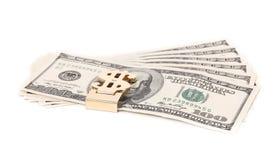 100 долларов банкнот Стоковое Изображение RF
