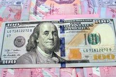 100 долларов на украинских банкнотах grivnas Стоковая Фотография