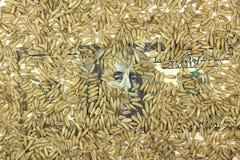 100 долларов счета с зерном предпосылки ячменя Стоковая Фотография RF
