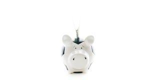 100 долларов США в Piggybank изолировали на белой предпосылке Стоковые Изображения