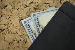 доллары 100 2 Стоковое Изображение RF