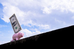 доллар банка piggy Стоковая Фотография