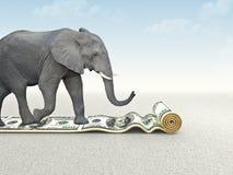 доллар сильный Стоковые Изображения RF
