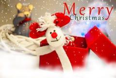 Олени рождества в коробке Стоковые Изображения RF