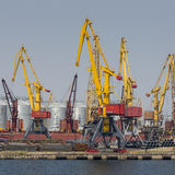Одесса, Украина - 30-ое июля 2016: Краны контейнера в порте груза стоковое фото rf