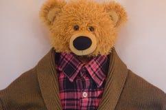 одетый медведь Стоковая Фотография