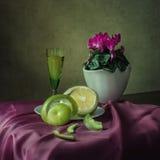 О зеленом грейпфруте Стоковое Изображение