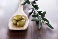 оливки Стоковое Изображение RF