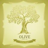 Оливковое дерево. Оливковое масло. Оливковое дерево вектора. Для ярлыков, пакет. бесплатная иллюстрация