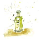 Оливковое масло акварели Стоковая Фотография