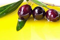 Оливковое масло Стоковое Фото