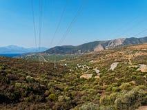 Оливковые дерева в греческих горах Стоковое Изображение RF