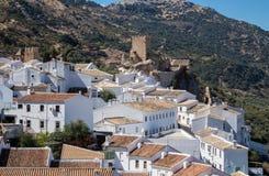 Оливковые дерева окружают hilltown Zuheros в Андалусии Стоковое Изображение RF