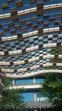 Олимпийские флаги Стоковая Фотография