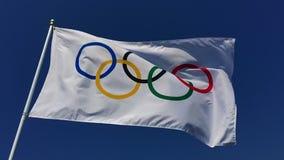 Олимпийский флаг порхая в ярком голубом небе видеоматериал