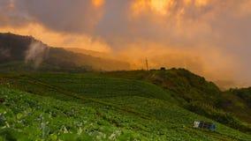 долина горы ландшафта тумана облака Стоковое Фото