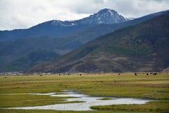 долина горы снега пасмурная Стоковая Фотография RF