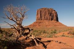 долина памятника merrick butte Стоковая Фотография RF