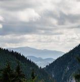 долина Стоковые Фотографии RF