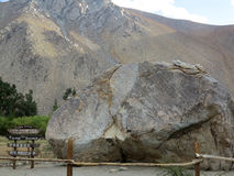 долина del elqui valle Стоковые Фото