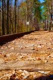 Одинокая рельсовая система в древесинах Georgia Стоковое Изображение