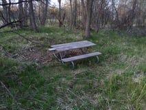 Одинокая скамейка в парке Стоковое фото RF