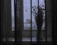Одиночество осени Стоковое фото RF