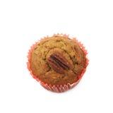 Одиночная изолированная булочка гайки пекана Стоковое Изображение RF