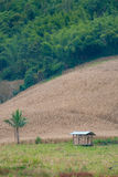 Одиночная хата стоит самостоятельно в поле Стоковое Изображение